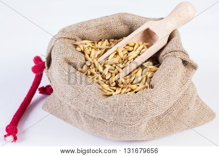 Heap of organic oat grains with wooden spoon in jute bag on white background healthy food and nutrition