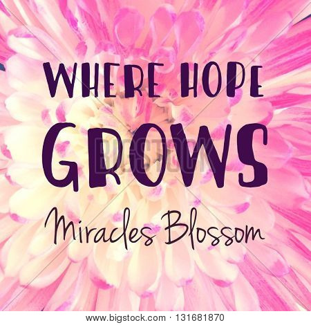 Inspirational Typographic Quote - Where Hope Grows Miracles Blossom