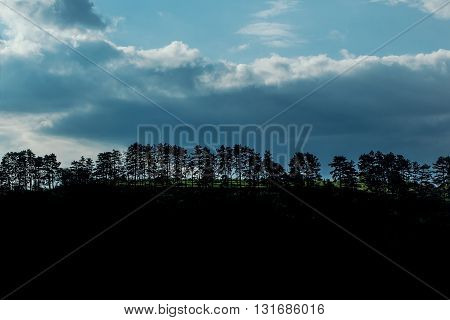 Tree line silhouette with blue cloudy sky and dark black ground copy space