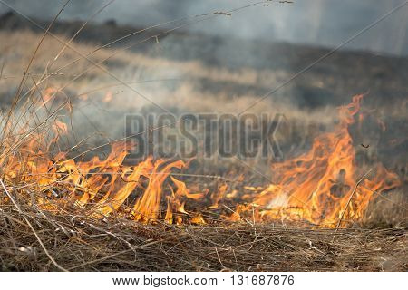 burns dry grass fire in a rural location
