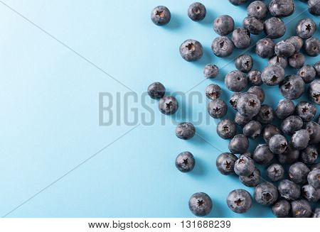Blueberry border design. Ripe and juicy fresh picked bilberries close up. Copyspace for your text