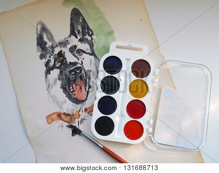 I drew on paper drawing of a dog with the help of watercolor paints and brushes.