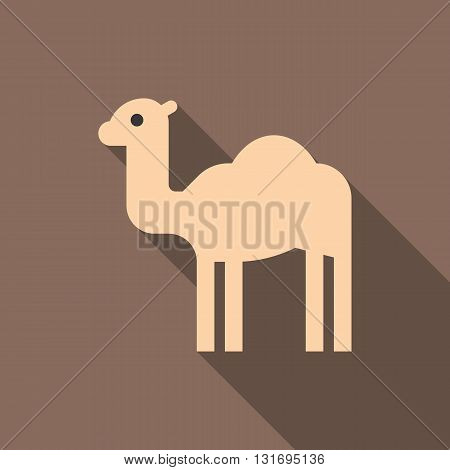 Camel icon with long shadow, flat design