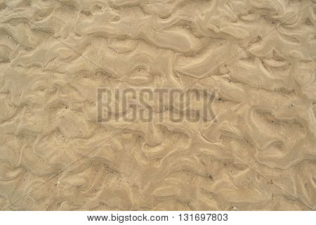 Detail of sandy beach as abstract background