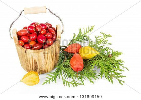 Wooden bucket with rosehip berries isolated on white background.