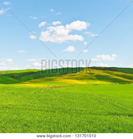 The Green Sloping Meadows of Tuscany in the Spring