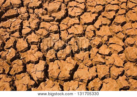 Arid ground surface. Cracks in the ground background