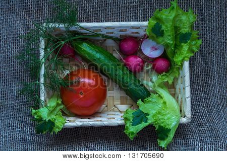 Tomato, cucumber ,radish, lettuce and green onions in a  basket.