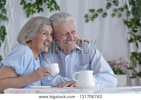 Portrait of a mature couple drinking tea
