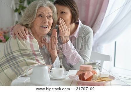Portrait of a senior mother and adult daughter together