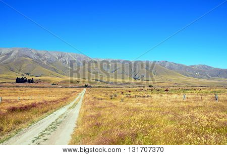 Dirt road leading through farmland to the mountains in the distance