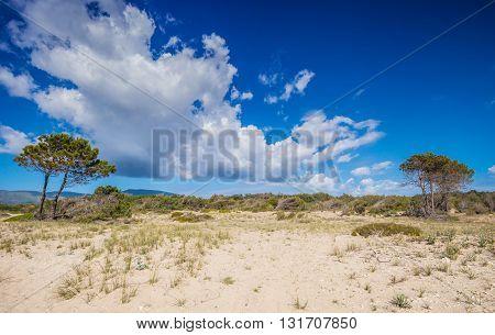 Desert Or Sandy Dunes In Hot Summer Day Zakynthos Greece