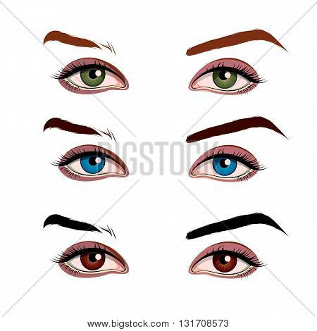 vector illustration of a female eyes set