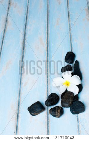 Flower on group of black stone on wooden floor.