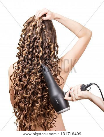 Girl with long curls and a hair dryer in a hand hairdresser isolated on white background.