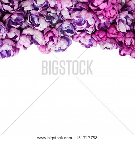 Background with flowers of lilac isolated on white. With copy-space.