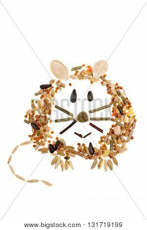 Mouse Made Of Feed