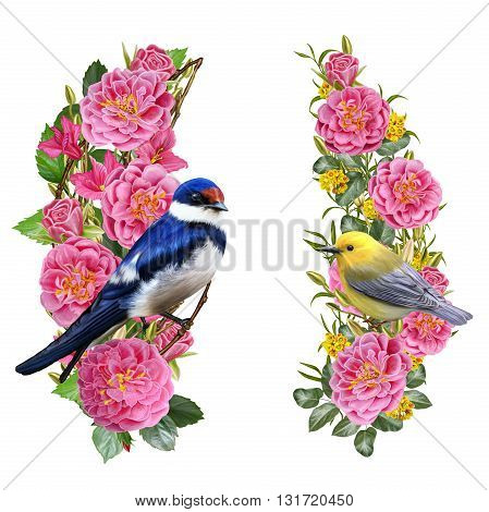 Set. Little bright swallow bird on a branch of pink roses. Little yellow bird on a background of pink roses weaving. Isolated on white background.