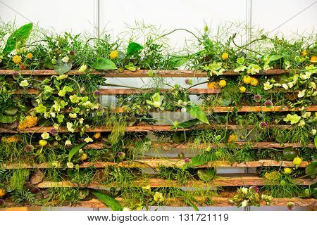 Flowers round the fence