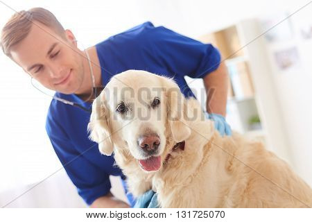 Skillful male veterinarian is analyzing animal health through the stethoscope. He is standing and smiling. Focus on the dog