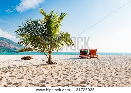 Coconut tree and 2 beach chairs in a sunny blue sky day. A luxury relaxation lifestyle in Phuket Thailand