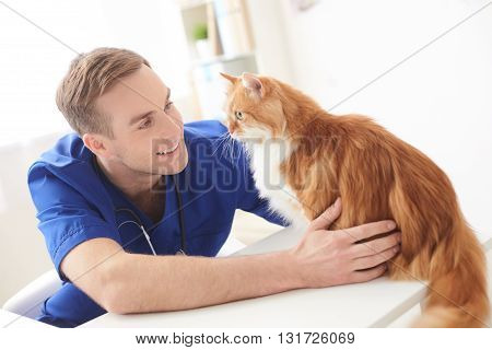 Everything will be okay. Attractive young veterinarian is stroking the cat and smiling. He is sitting at table in his office