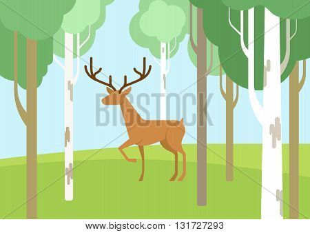 Deer in the bichwood forest flat cartoon vector wild animal