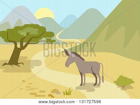 Donkey flat design cartoon vector wild animals