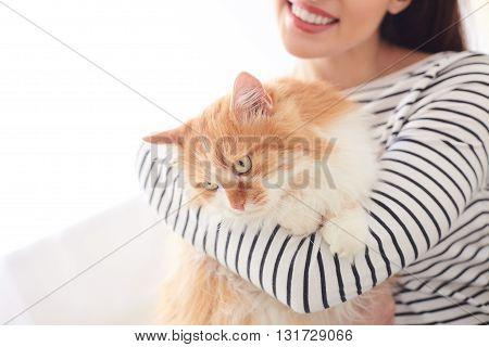 Pretty young woman is holding a cat and smiling. She is embracing the animal with love