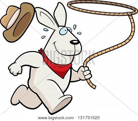 Rabbit Rodeo