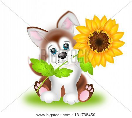 Illustration of cute puppy with sunflower isolated