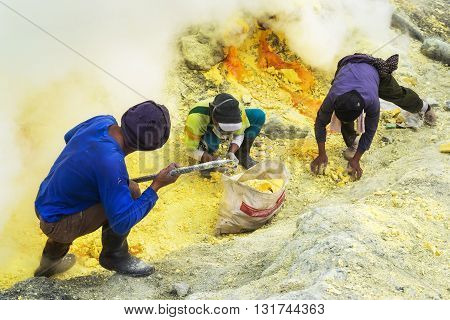 Kawah Ijen Volcano, East Java, Indonesia - May 25, 2013: Sulfur miners extracting sulfur inside the crater of Kawah Ijen volcano in East Java, Indonesia.