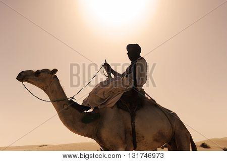 TIMBUKTU, MALI, 02-SEPTEMBER-2011. Tuareg his camel in a camp near the city of Timbuktu