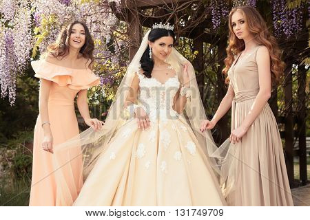 fashion outdoor photo of gorgeous bride in luxurious wedding dress, posing with beautiful bridesmaids in elegant dresses