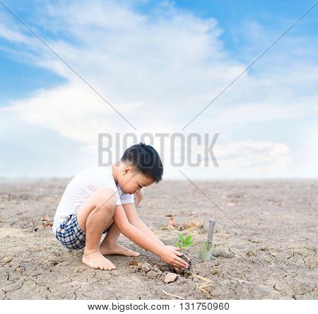 Boy Planting On Crack Soil