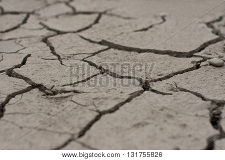 Horizontal photo of a piece of extremely dry and cracked ground with shallow depth of field