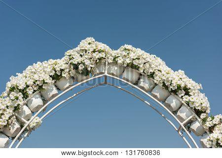 UAE DUBAI - DECEMBER 30: dubai miracle garden with over million flowers on a sunny day December 30 2014