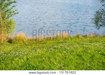 lake shore background in Germany on a sunny day