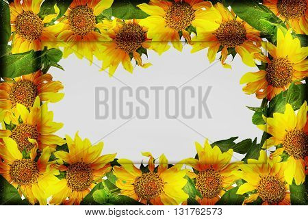embossed frame with sunflowers on a white background