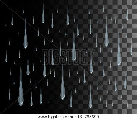 Rain drops on the transparent background. Rainy weather Vector rain isolated on transparent background. Vector illustration