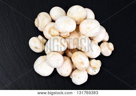 Champignons Mushroom on Wood Background Studio Photo