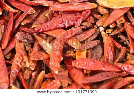 image of spice red pepper pictures taken close-up
