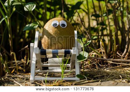 Funny vegetables with eyes in a lounger