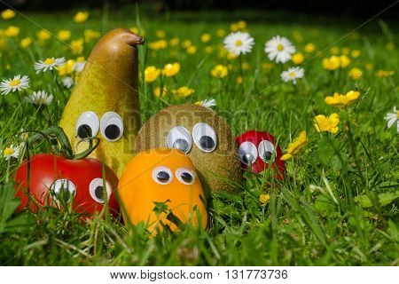 Funny vegetables and fruits with eyes in a summer meadow