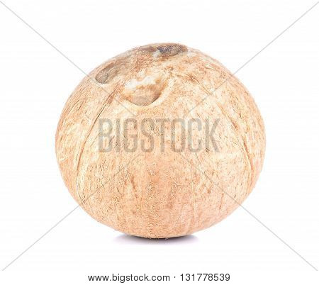 coconut full ball isolated on white background