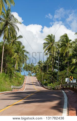 Beautiful asphalt road and coconut palm tree in island Koh Phangan Thailand