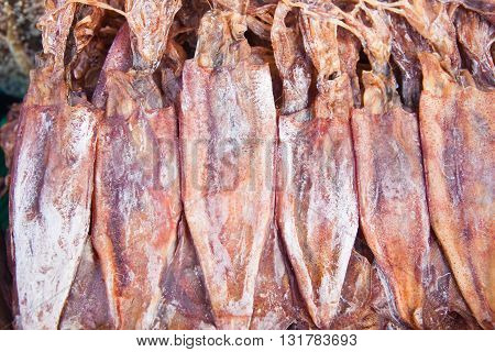 Dried Calamari in seafood marketEast of Thailand
