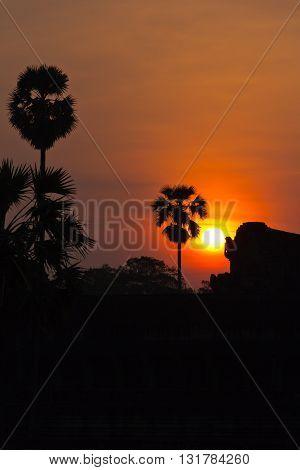 Sun Rising Behind Ruins Of Angkor Wat Portrait