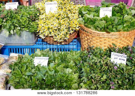 Greengrocery assortment with organic herbs peppermint chamomile on market