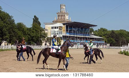 PYATIGORSK, RUSSIA - MAY 22: Before horse race for the prize of the Vstupitelni Russia's largest hippodrome in Pyatigorsk, Caucasus, Russia on May 22,2016.